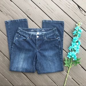 Christopher & Banks Modern Fit Jeans